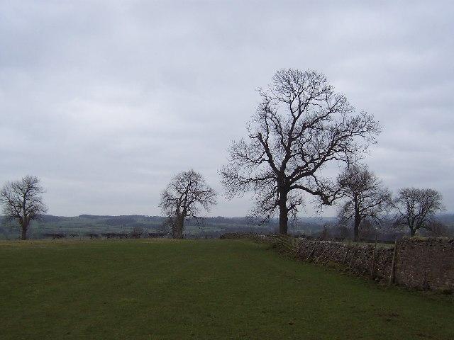 Fields south east of Middleham