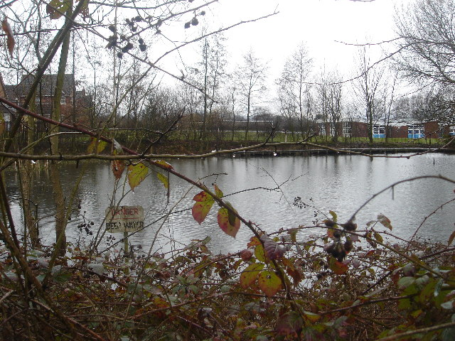 Pond and Chantlers Primary School