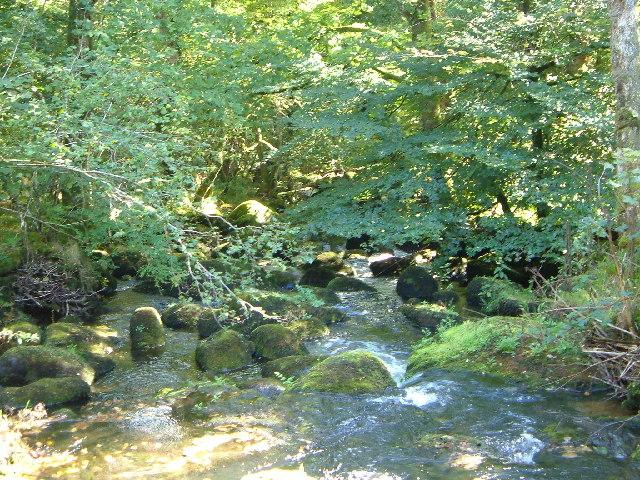 River Bovey at Clam Bridge