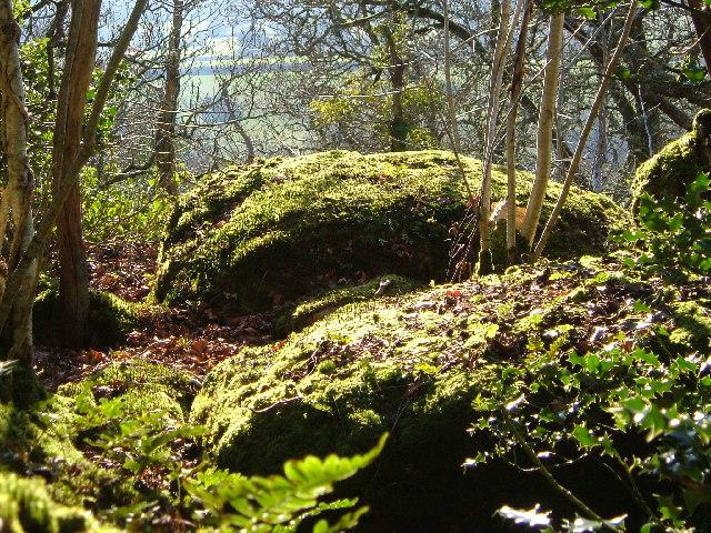 Boulders in Shaptor Wood