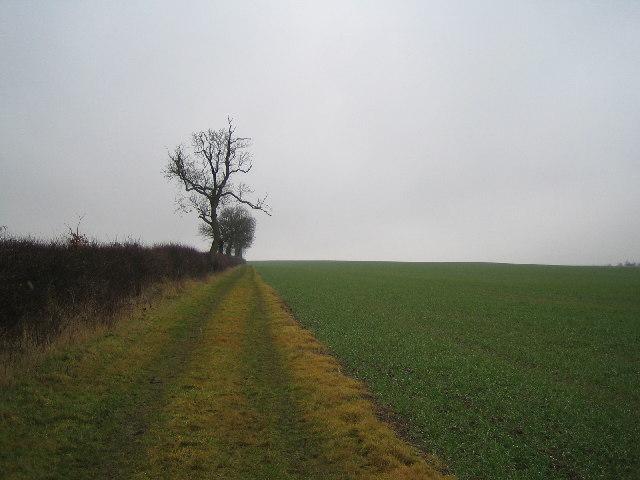 Footpath to Preston Capes