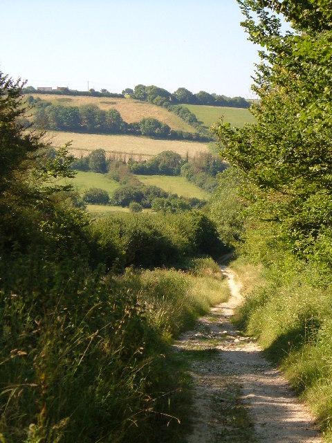 Bridleway near Osmington