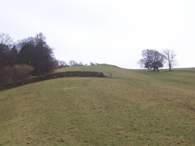 Lady Hill
