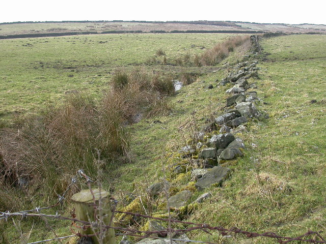 The Eastern slopes of Ellarcarr Pike