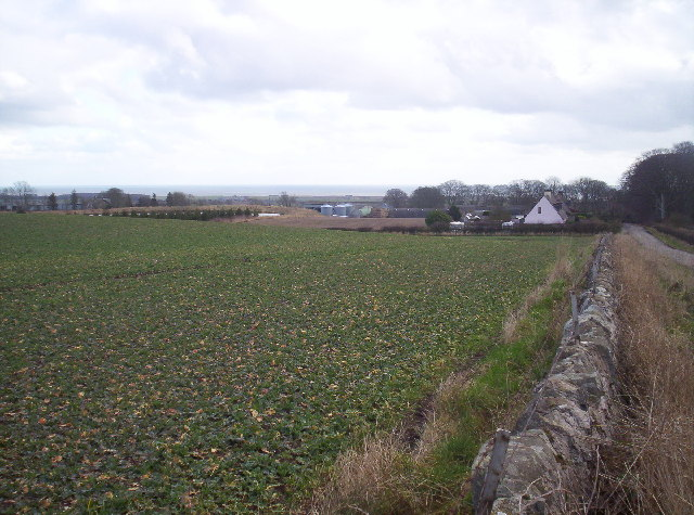West Balmirmer Farm and Balmirmer Cottages