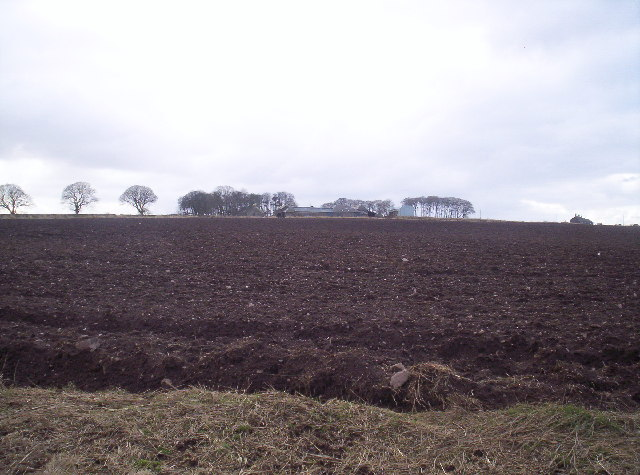 Ploughed Field and Fauldiehill