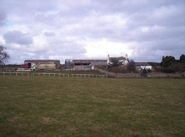 Pitlivie Farm Near Panmure Estate Grounds