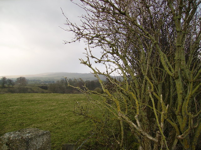 Farmland near Ingleton