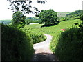SO3122 : Country road near Pont Rhys Powell by John Thorn