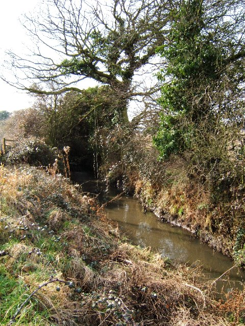 Brook South of Wickford