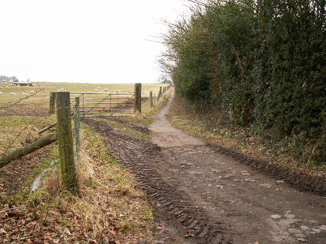 Bridleway from Cofton Church Lane