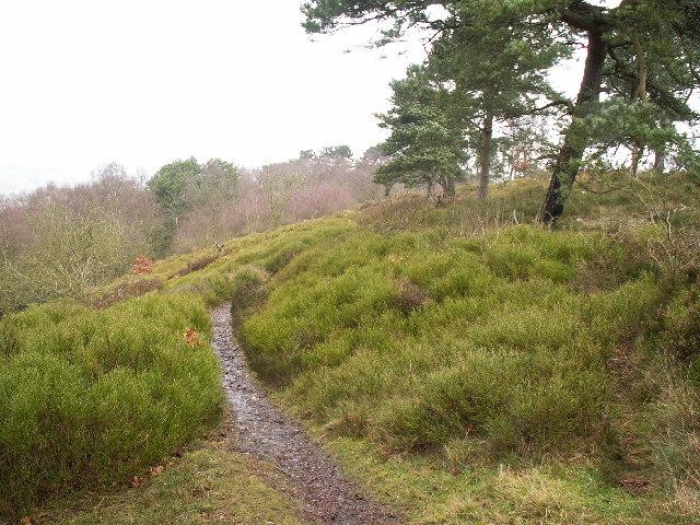 Rednal Hill