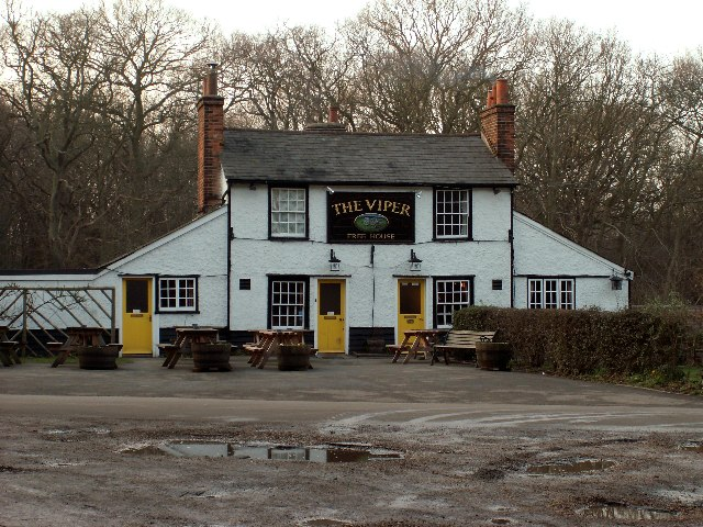 The Viper, a public house near Fryerning, Essex