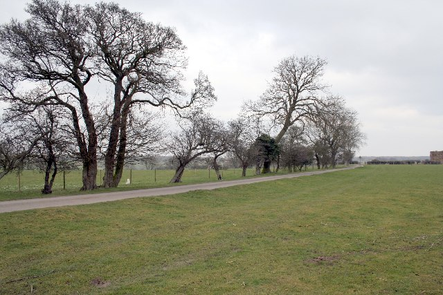 Top Pickworth open field