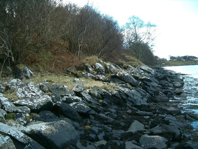 Shore of Loch Sween, looking towards Rubh an Tacair