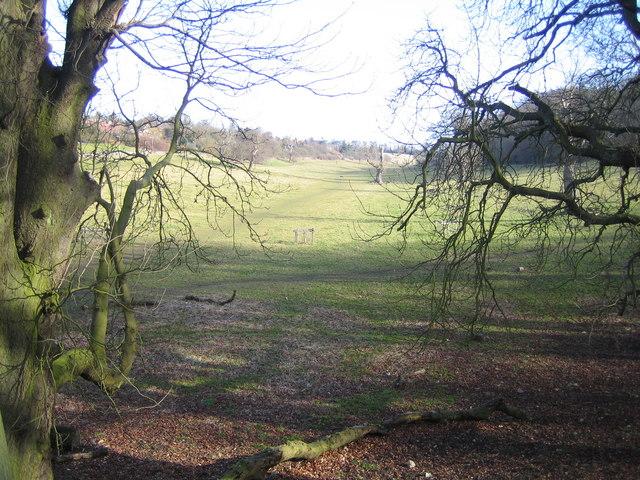 Hemel Hempstead: Long Deans Nature Reserve