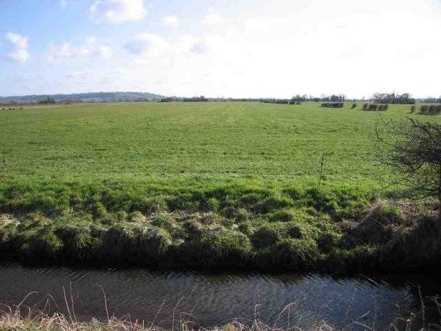 Queen's Sedge Moor