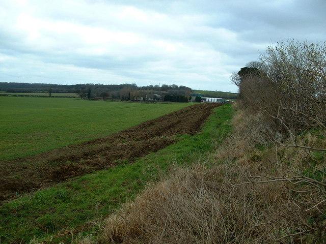 Along a field boundary, towards Marr Grange