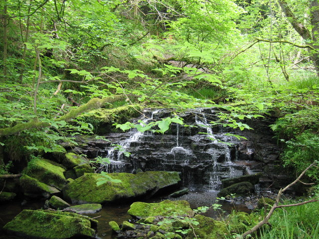 Waterfall in Dipton Wood, Hexhamshire