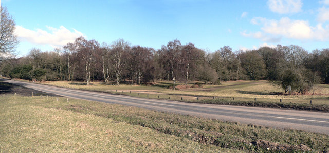 The Edge of Ashridge Park