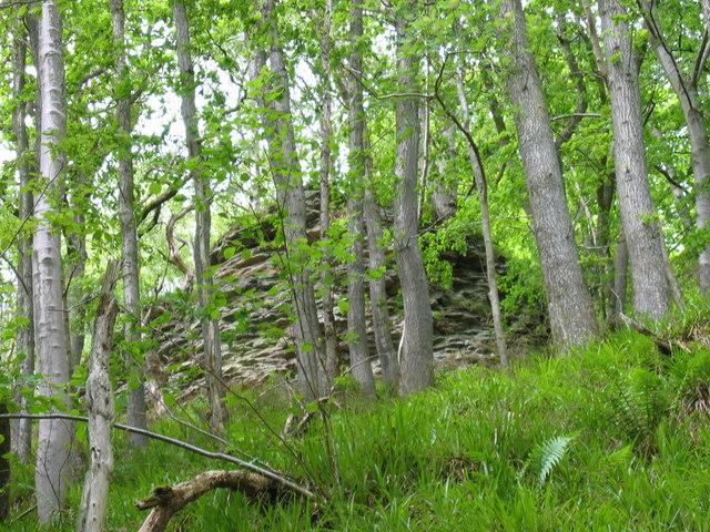 Rock Formation Dipton Wood