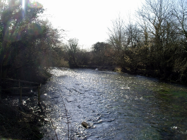 River Itchen - looking downstream