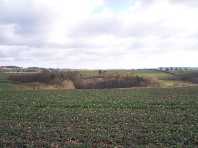Fields of Maythorn Farm, Brockhampton