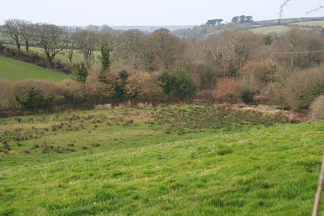 Valley Bottom south of Trethiggy Farm