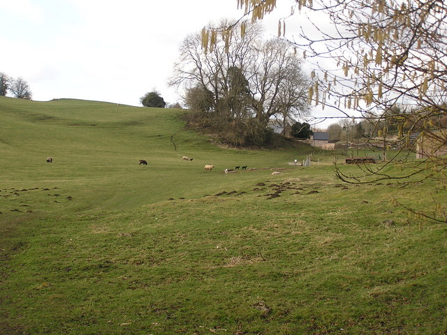 Farmland near Whitecliff