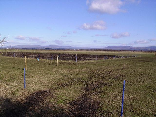 Farmland Crawley's Cross Farm