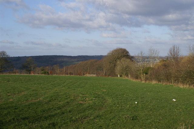 Barrow Hill Field