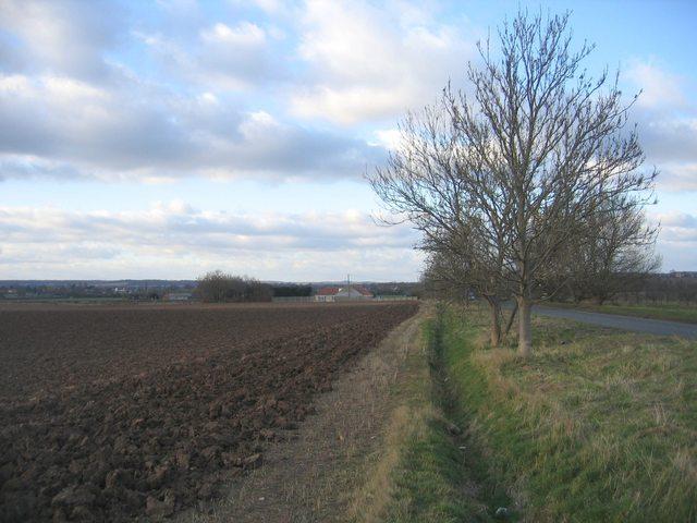 Beside the Honeybourne Road