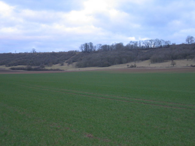 Escarpment near the Graftons