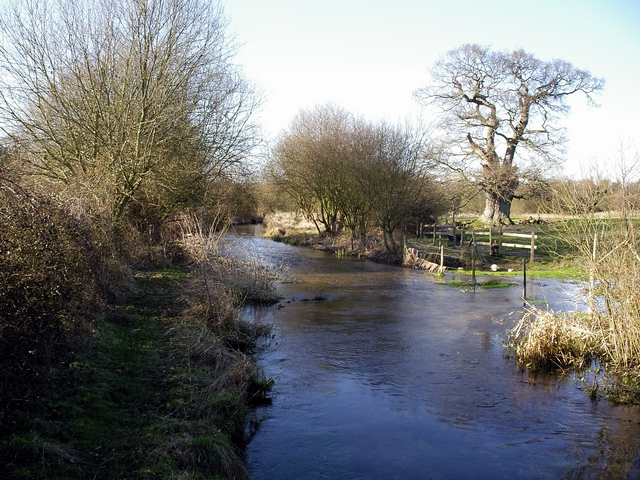 River Itchen near Sevington Farm