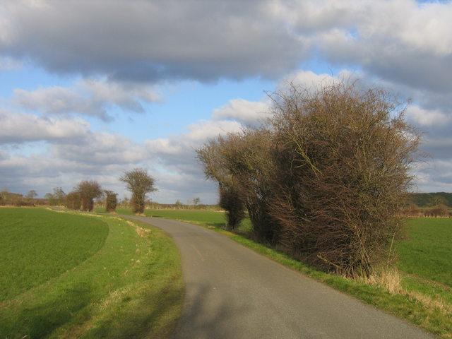 Braggington Lane