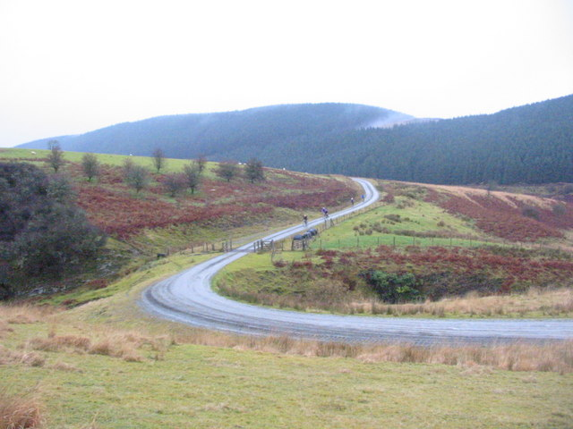 Forest Track above Llyn Brianne
