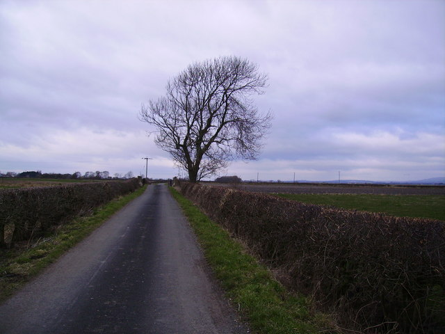 Road from Cumming Carr