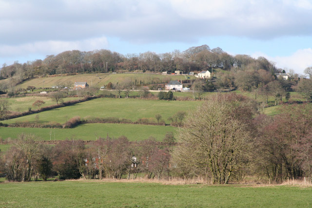 Hemyock: Combe Hill from near Culm Bridge