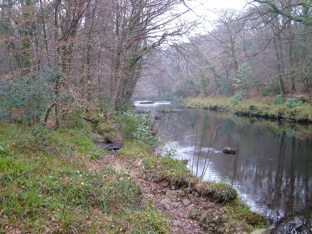 River Dart at Hembury Woods