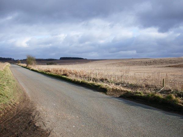 Grimston Heath