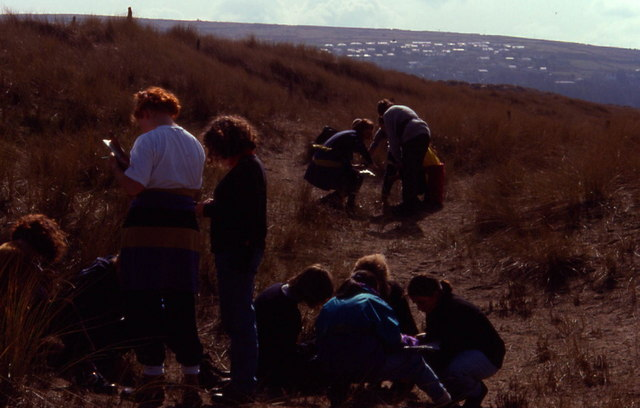 Students doing fieldwork on the Harlech Sand dunes