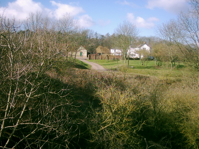 Roman Road Pit at Chalkdell Farm