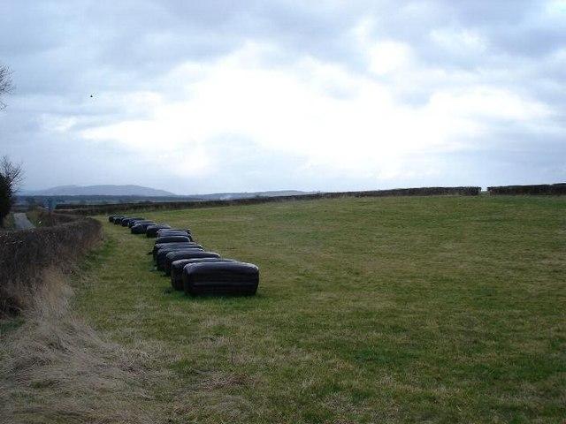 Axton Farmland