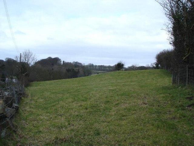 Farmland at Rhewl Fawr