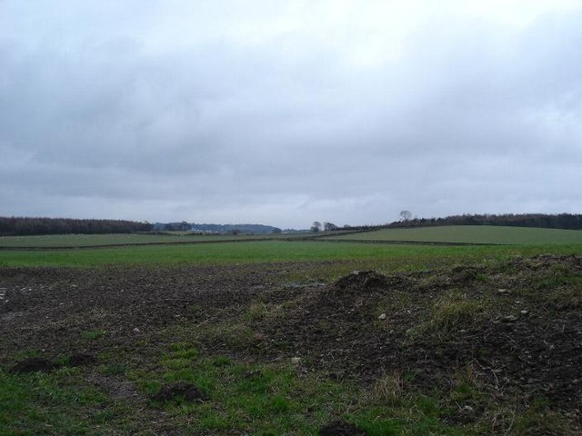 Mostyn farmland