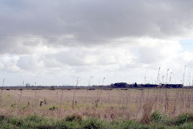 Fen fields off Meadow Drove, Bourne