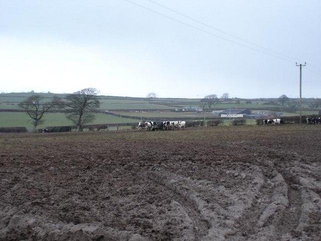 Muddy Sarn