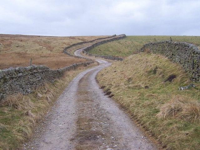 Hartlington Moor Lane (North)