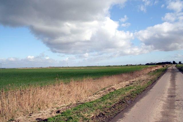 Fen fields near Dyke Fen Farm