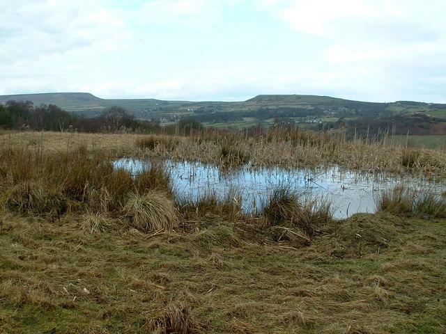Pond near Knowl Top